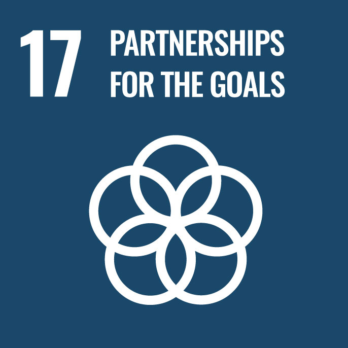 17 Achieving goals with partnership